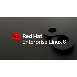 Read more about the article Disponible Red Hat Enterprise Linux 8.2
